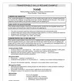 Skills Section Resume Examples by Additional Skills Resume Summary For Sales Customer Service With