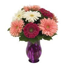 conroy flowers premier local florist redondo ca conroy s flowers
