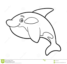coloring book coloring page killer whale stock vector image