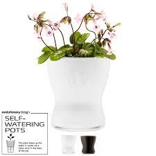 Self Water Pot Vase Eva Solo Self Watering Flower Pot Relaxtribe