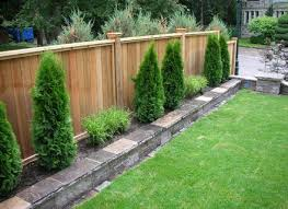fence line landscaping ideas best plants for fencing decorating