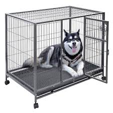 your dog can u0027t break these heavy duty escape proof crates
