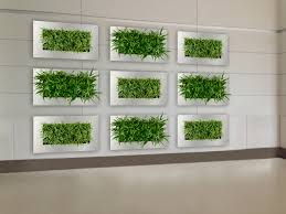 best hanging wall planters ideas on pinterest wall herb with wall