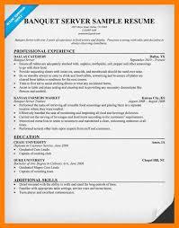 server sample resume eliolera com