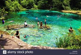 Florida Cool People Enjoying A Cool Swim In The Head Spring Of Ichetucknee