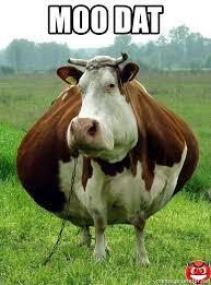Moo Meme - moo dat fat cow meme generator