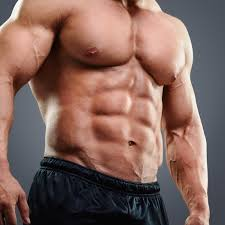 chest workouts chest exercises for the guide