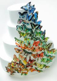 butterfly wedding cake brilliant butterfly wedding cake how to make a wedding cake with
