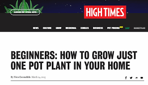 Beginners How To Grow Just by The Victorian Drugs Inquiry Enpsychedelia