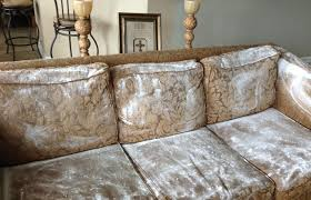 can you steam clean upholstery cleaner how to clean upholstery tips and tricks amazing places