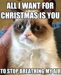Funny Christmas Memes - 25 christmas memes quotes and humor