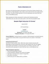 Objective For Flight Attendant Resume Professional Resume Template Latex Professional Resumes Sample