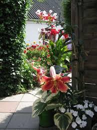 Backyard Flower Gardens by 95 Best Beautiful Gardens Images On Pinterest Landscaping