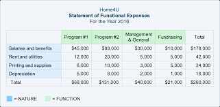 Financial Statement That Reports Revenues And Expenses by Nonprofit Accounting Explanation Accountingcoach