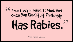 quotes about reading cassandra clare 36 rabies quotes and slogans quotes u0026 sayings