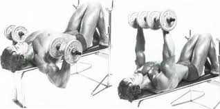 Flat Bench Dumbell How To Get A Big Chest Fast Arnold U0027s Top Tips