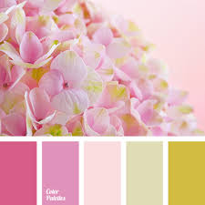 pink color shades warm shades of pink color palette ideas