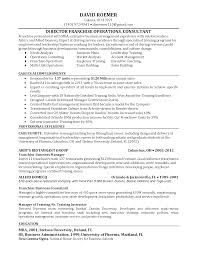 Sample Financial Service Consultant Resume Business Consultant Job Description Resume Resume For Your Job