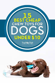 260 best best dog toys u0026 puppy toys images on pinterest puppies
