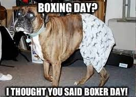 Boxing Day Meme - 70 boxing memes for you