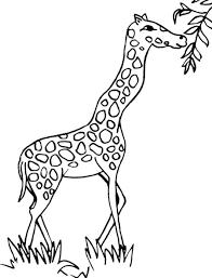 giraffe coloring pages printable fish bowl coloring page printable coloring page kids