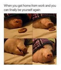 Burrito Meme - burrito meme by ventrix memedroid