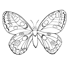 printable butterflies coloring pages chainimage