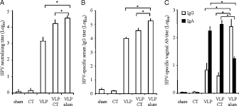 Serum Hpv sublingual immunization with hpv vlp elicits serum neutralizing abs