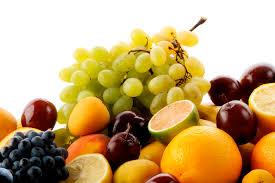 what fruits can ferrets eat u2013 my ferret pet