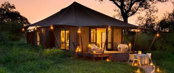 12 day aac south african safari and cape highlights best african