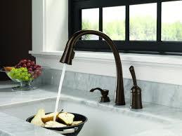 Delta Savile Kitchen Faucet Sink U0026 Faucet Wonderful Kitchen Faucet With Sprayer Plus Delta