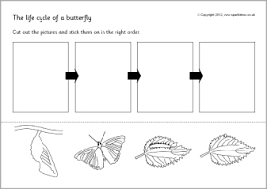life cycle of a butterfly worksheet opposites worksheet cut and