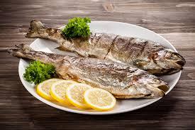 fischküche österreichs fischküche wrenkh