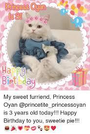 Princess Birthday Meme - happy iptbdau my sweet furriend princess oyan is 3 years old today