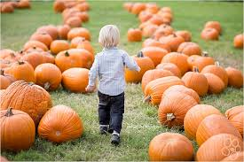Local Pumpkin Patches Top 10 Pumpkin Patches In The U S