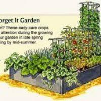 garden box layout garden xcyyxh com