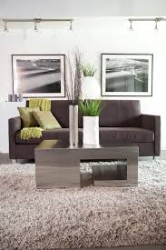 Shaggy Rugs For Living Room Captivating Area Rug Ideas For Living Room Using Wool Shaggy Rugs