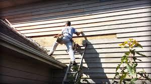 siding contractor siding repair minneapolis mn edina painting