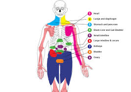pain body pain in these parts of the body could be life threatening