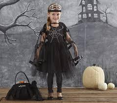 Childrens Spider Halloween Costume Spider Fairy Costume Pottery Barn Kids