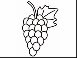 brilliant grapes coloring pages printable with grapes coloring