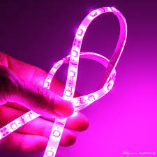 2017 100m 5050 3528 smd led strip light purple pink single colour