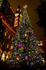 tree all lit up tree in martin place flickr