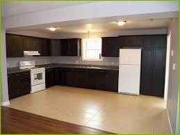 rona kitchen cabinets reviews white kitchen cabinets rona lovely rona kitchen cabinet hardware