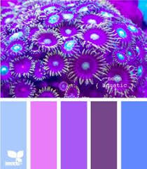 Colors That Go With Purple by A Monochrome Lilac Color Palette Contains All Shades Ranging From