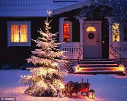 Decorating With Christmas Lights Year Round by Decorating Your Outdoor Christmas Tree