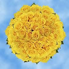 fresh flowers in bulk globalrose 200 fresh cut golden yellow roses gold