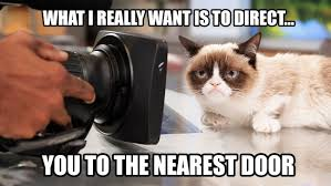 Memes Grumpy Cat - grumpy cat goes hollywood 6 movie star memes hollywood reporter