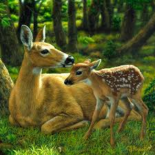 whitetail deer first spring square painting by crista forest