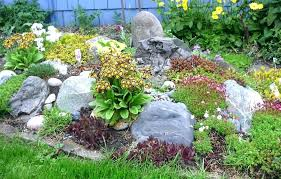 How To Build A Rock Garden How To Build A Rock Garden On A Slope Your Guide To Choosing Rocks